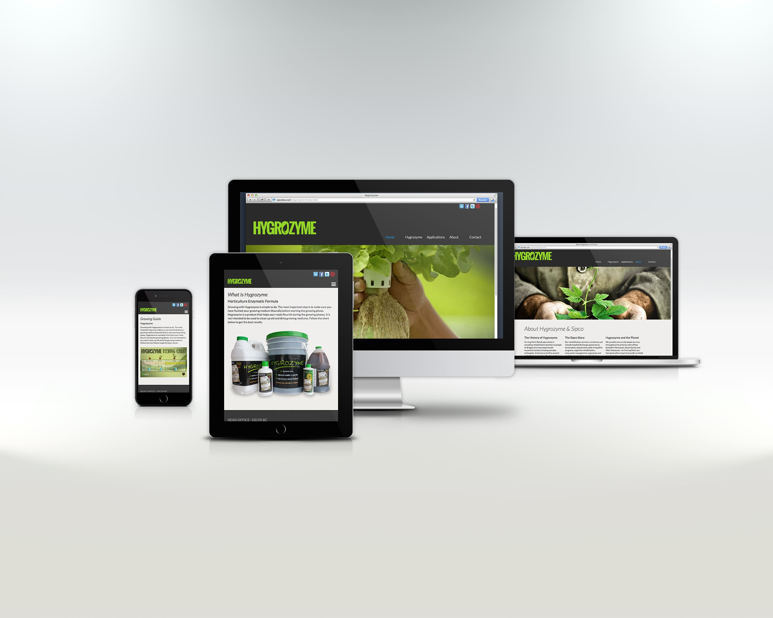 https://www.ravensfoot.com/2019/wordpress/wp-content/uploads/2019/02/hygrow-website-design-1.jpg
