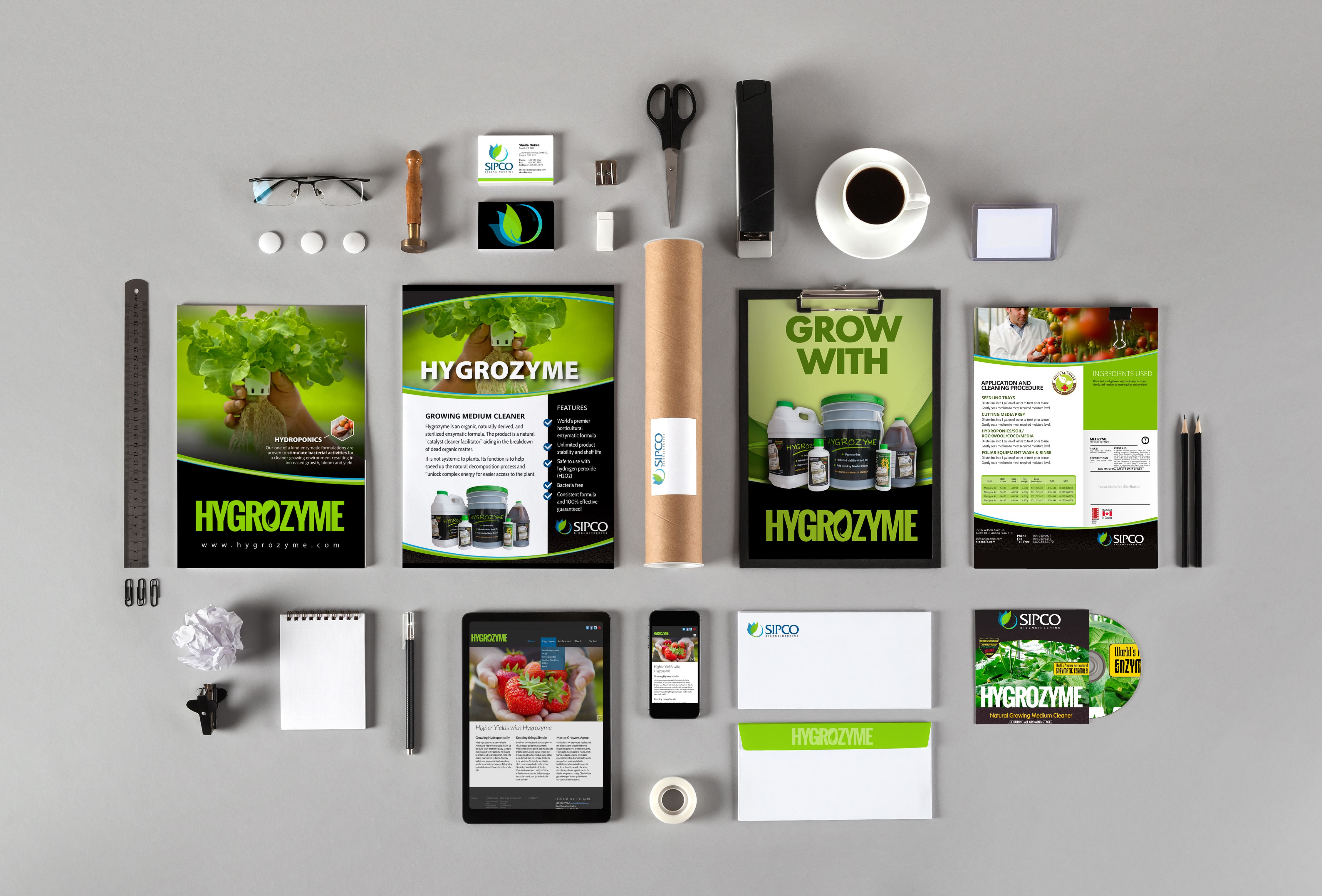 corporate branding and stationary